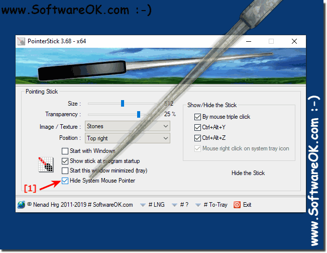 Hide system mouse pointer feature for windows!